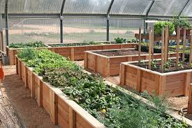 greenhouse raised beds by spinning away
