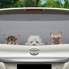 Can You See Me Now West Highland White Terrier Car Door Fridge La Follus Com