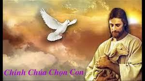 Chính Chúa chọn con - Hoàng Thy mp3 lyric lời bài hát