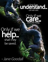 inspiring quotes about animals one green planetone green planet
