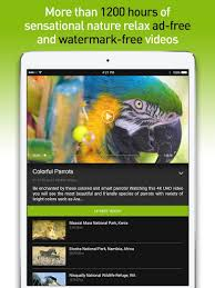 ✅[2020] 4K Nature Relax TV android App Download [Latest]