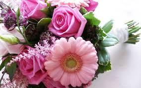 صور زهور رائعة الزهور وجمالها ومحبيها صوري