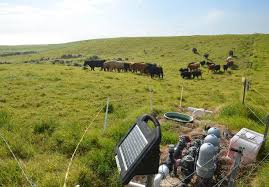 Electric Fence Roundup Choose Your Energizer Drovers