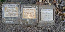 """Albert Leach """"Bert"""" Hansen (1870-1951) - Find A Grave Memorial"""