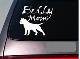 American Bully Mom Stickers Decal Pitbull Pit Bull Abkc Bully Amstaff Window Sticker Car Laptop Motorcycle 15cm Car Stickers Aliexpress