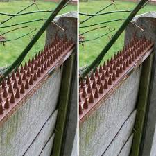 10pcs Fence Wall Spike Deterrent Anti Theft Fencing Garden Fence Wall Spikes Cat Anti Bird Thorn Intruder Protection Security Repellents Aliexpress