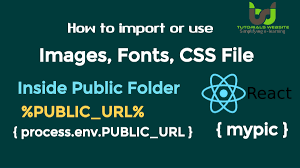 how to import or use images in reactjs