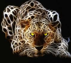 ألوان متعددة أفضل بيع أصيلة جديدة صور حيوانات وحشيه Shpe Fresno Org