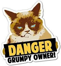 Amazon Com Danger Grumpy Owner Grumpy Cat Sticker Decal Funny Vinyl Car Bumper Automotive