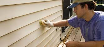 best liquid cleaners for vinyl siding