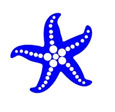 Starfish Decal Custom Vinyl Car Truck Window Sticker Customvinyldecals4u