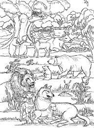 Kleurplaat Dieren In Het Bos