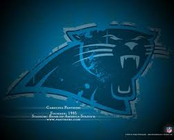 carolina panthers wallpapers hd for