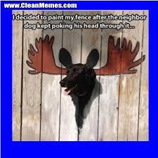 Paint My Fence Clean Memes
