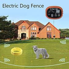 Dr Tiger 2 Receivers Electric Dog Fence Invisible Fence For Dogs With 328 Ft Wire Collar Send Beeps And Shock Correction Wcfn 1 On Galleon Philippines
