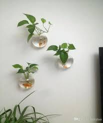 contemporary plant wall hangers indoor