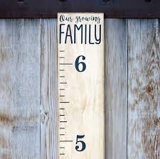 Amazon Com Little Acorns Diy Vinyl Growth Chart Ruler Decal Kit Our Growing Family Modern Toys Games
