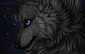 wallpaper profile myarukawolf by