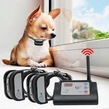 Kdx 882c Rechargeable Wireless Electronic 1 2 Dog Fence System Training Collar Kit Transmitter Rechageable Also 100g2280 Cat Educational Repellents Aliexpress