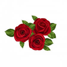 red flowers png images 4700