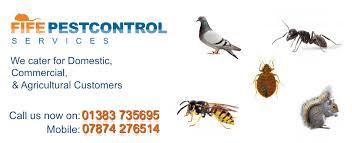 Pest Control Fife - Fife Pest Control Services ® - Fife Council Pest Control