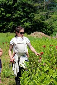 Juliette Abigail Carr, Registered Herbalist (AHG) – Old Ways Herbal:  Juliette Abigail Carr, RH (AHG)