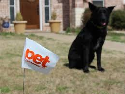 Presco Flags Play Critical Role In Keeping Four Legged Friends Safe Presco Marking Products And Engineered Films