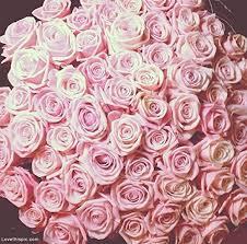 gifts fleurology 37cm coloured sculpted