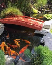 top 50 best backyard pond ideas