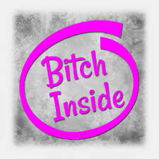 Bitch Inside Funny Car Quote Vinyl Decal Decals Stickers Single Pink For Sale Online Ebay
