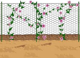 V Protek Vegetables Cucumber Climbing Fence Clematis Trellis Hexagonal Clematis Fence 36 X24 Silver Amazon Co Uk Garden Outdoors