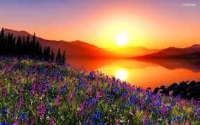 Glowing Sunrise - Other & Nature Background Wallpapers on Desktop ...