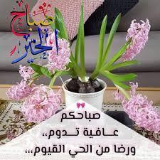 زهور الربيع صباح الخير لمن ينتظرنا كل صبح ليبادلنا Facebook