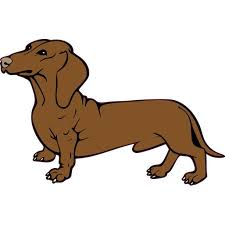 5in X 3in Weenie Dachshund Dog Bumper Sticker Decal Car Window Stickers Decals Walmart Com Walmart Com