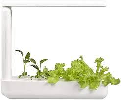 vegebox kitchen smart indoor garden