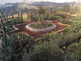 planning my potager garden tidying