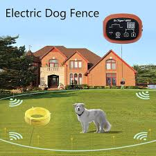 Best Invisible Dog Fence Electric Underground Petlifeacademy