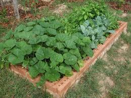 durable raised garden beds 5 steps