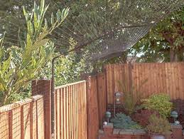 Cat Fence Cat Fencing Cat Fences Cat Brackets Cat Barriers By Protectapet