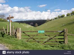 Cow And Gate High Resolution Stock Photography And Images Alamy