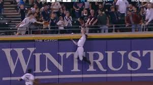 Watch: White Sox' Adam Engel Robs Yankees of Home Run for Second ...
