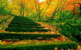171 stairs hd wallpapers background