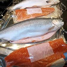 norwegian trout and salmon