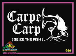 Carpe Carp Seize The Day Catfish Vinyl Decal