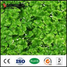 China Home Garden Artificial Grass Fence Screen Photos Pictures Made In China Com