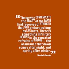 rachel carson quote about nature