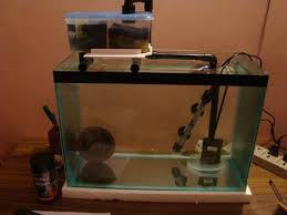 diy sump filter for aquariums diy