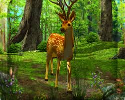 3d deer nature live wallpaper android