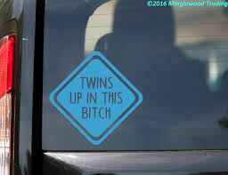 Twins Up In This Bitch Vinyl Sticker Car Window Truck Minivan Die Cut Decal Minglewood Trading