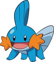 Mudkip   Mudkip, Pokemon pokedex, Pokemon
